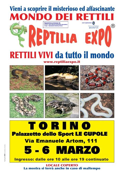 Palazzetto Le Cupole Torino by Reptilia Expo L Affascinante Mondo Dei Rettili Al