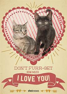 12 Kitty-cat Valentine's Day cards that will make you aww