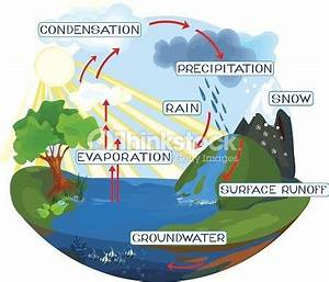 How To Design A Labelled Diagram Of The Water Cycle