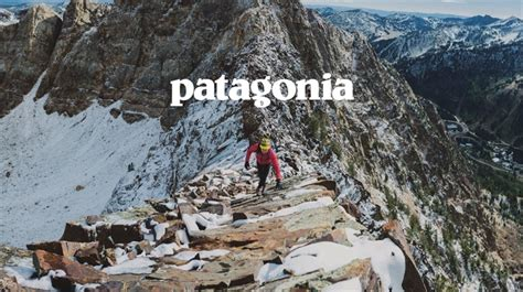 patagonia donates  tax cut  eco charities stylus