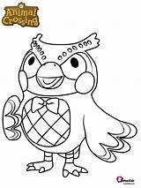 Crossing Coloring Animal Blathers Coloriage Character Owl Dessin Ausmalbilder Bubakids Imprimer Cartoon Characters Printable Kleurplaat Animalcrossing Kleurplaten Animals Nieuwe Malvorlage sketch template