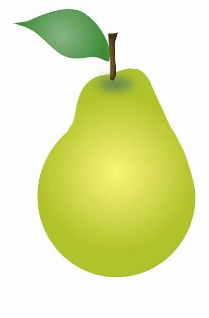 Pear Clipart Clip Printable Pears Fruit Transparent