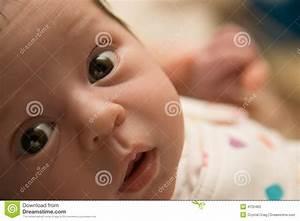 Augenfarbe Baby Berechnen : neugeborenes baby stockfotos bild 4722463 ~ Themetempest.com Abrechnung