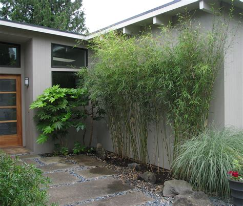 bamboo garden nj bamboo landscaping as a plant bistrodre porch and