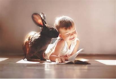 Rabbit Child Children 4k Wallpapers Exotic Pets