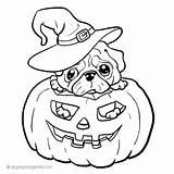 Coloring Pug Dog Printable Puppy Corgi Adult Halloween Pig Dogs Sheets Jack Pumpkin Lantern Coloringtop Cool Pugs Popular Animals Printables sketch template