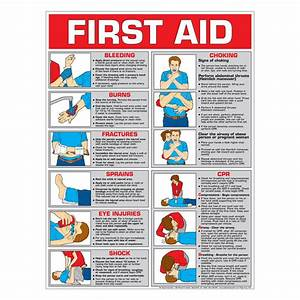 First Aid Chart  Color  Paper