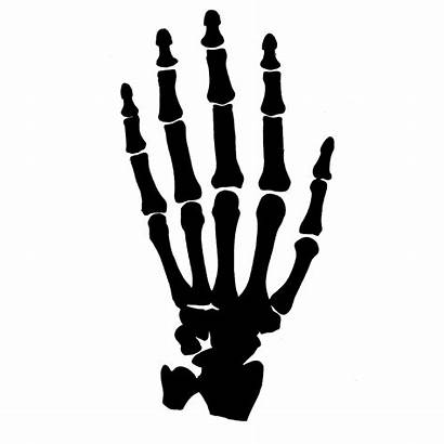 Skeleton Hand Clipart Hands Silhouette Clip Reaching