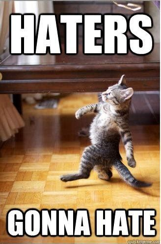Haters Gonna Hate Meme - 301 moved permanently