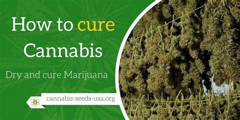 Dry And Cure Marijuana