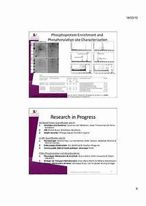 IBMM Proteomic Platform - ULB - Lab'InSight Proteomics