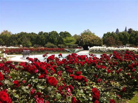 photos for san jose municipal garden yelp