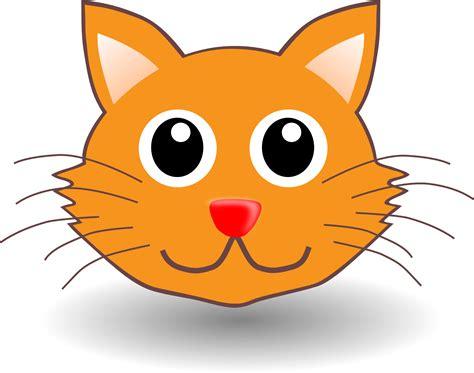 Cartoon Cat Photos
