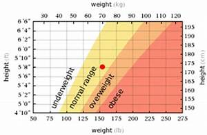 Healthy Weight Range Chart For Men The My Virtual Model Voice Human Height Weight Chart