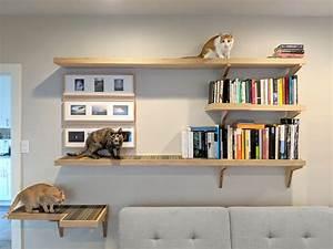 Cat, Library, Custom, Cat, Climbing, Shelves, Great, Catification, Inspiration