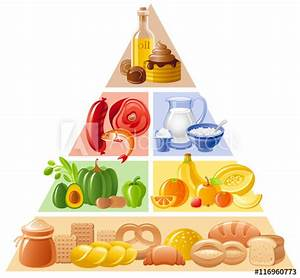 U0026quot Vector Illustration Of Food Guide Pyramid Infographics