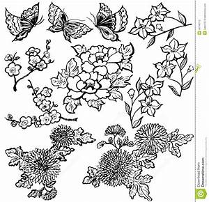 14 Japanese Flower Vector Art Images - Japanese Cherry ...