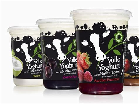 cuisine pays bas best 25 yogurt packaging ideas on product