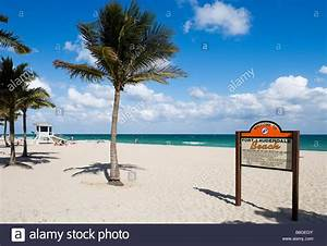 East Coast Zeichen : welcome to fort lauderdale beach sign fort lauderdale beach gold stock photo 22490299 alamy ~ Yasmunasinghe.com Haus und Dekorationen