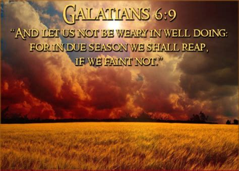 15:45 creative faith & co. POPULAR BIBLE VERSES ABOUT FAITH KJV image quotes at relatably.com