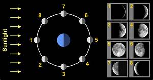 Background 2/6 - Lunar Phases - NAAP