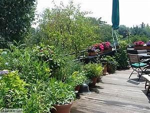 naschen auf dem balkon bauencom With garten planen mit bodenbeläge für den balkon