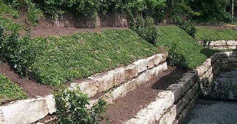 alte steinmauern im garten garten ideen hanggarten gärten gartenideen und gartenbau