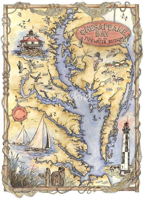 illustrated chesapeake bay map  sharon himes map