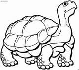 Clipart Colorear Tiere Malvorlagen Tortugas Tortoise Anfibi Disegni Schildkroete Laufende Turtle Ausmalbilder Dibujos Tortuga Kleurplaat Animales Pintar Malvorlage Ausmalen Imagenes sketch template