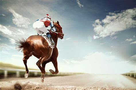 Profile Of A Man Who Created A Horse-racing Algorithm And