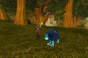 Wow hunter pets | a visual guide to hunter pets in the world