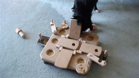 intelligenzspielzeug perro mit paulis commander youtube