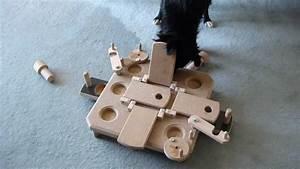 Hunde Intelligenzspielzeug Selber Machen : 2 intelligenzspielzeug perro mit pauli s commander youtube ~ A.2002-acura-tl-radio.info Haus und Dekorationen
