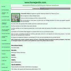 Herbe à Curry Toxique : aromatique pearltrees ~ Melissatoandfro.com Idées de Décoration