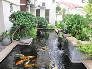 Bassin De Jardin Pour Poisson : bassin de jardin pour poisson bassin de jardin ~ Premium-room.com Idées de Décoration