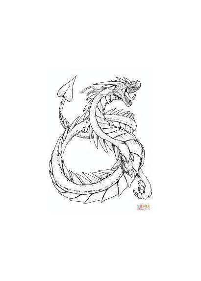 Coloring Dragon Pages Sand Kindex Printable Drawing