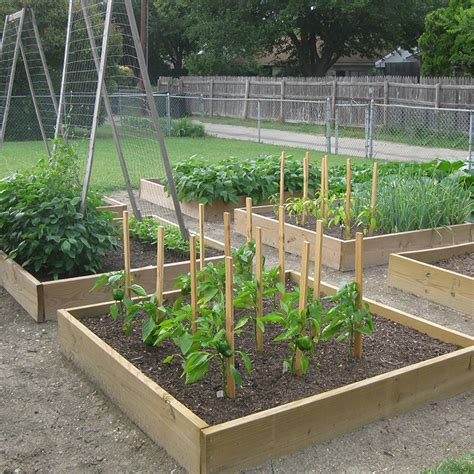 setting up a garden drip irrigation system vegetable