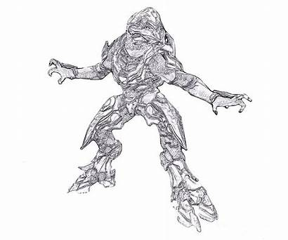 Halo Coloring Pages Sangheili Chief Master Printable