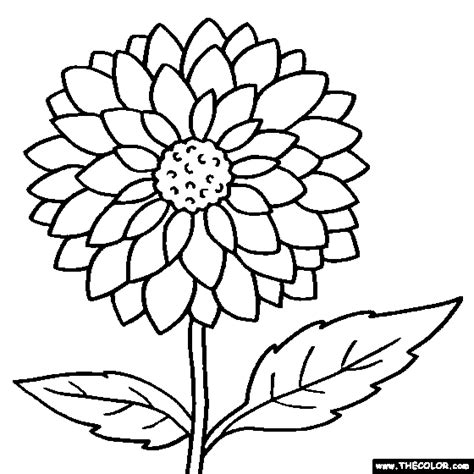 pictures of flowers to color coloring pages starting with the letter d
