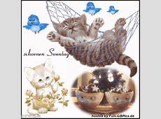 Schönen Sonntag Profil Bilder Grüsse Facebook BilderGB