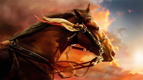 war horse  resolution hd  wallpapers