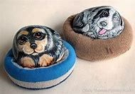 Animal Pet Rocks Ideas
