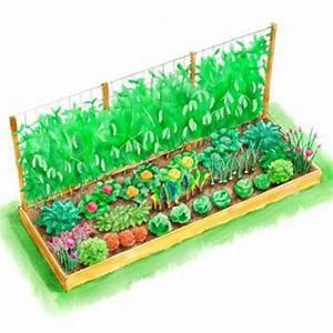 Gemusebeet planen tipps fur praktisch orientierte for Garten planen mit kleine regentonne für balkon