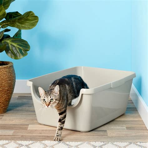 FRISCO High Sided Cat Litter Box, Extra Large 24-in (Free ...