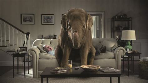 Elephant In The Living Room Definition by How To Outsource And Find Great With Trivinia