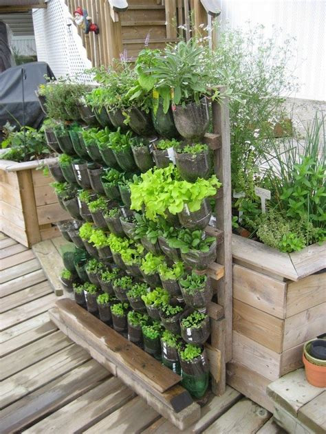 build  vertical garden  recycled soda bottles diy