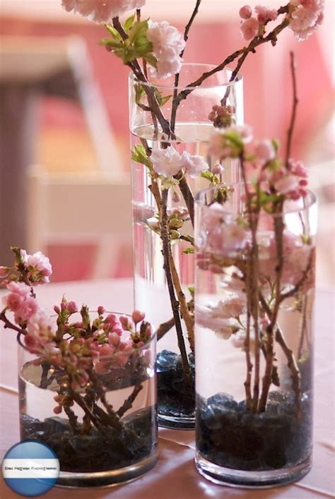 Wedding Themes: Cherry Blossom somethingborrowed Deco
