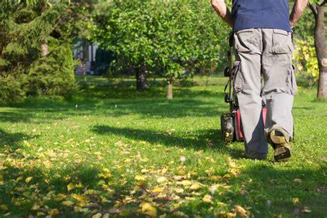 rasen säen im herbst rasen pflegen im fr 252 hjahr sommer herbst tipps vom experten plantura