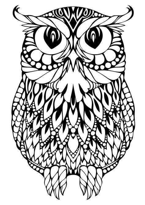 owl coloring pages coloring pages coloring paper