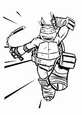 Colouring Wallaby Coloring Ninja Template Coloringtop sketch template